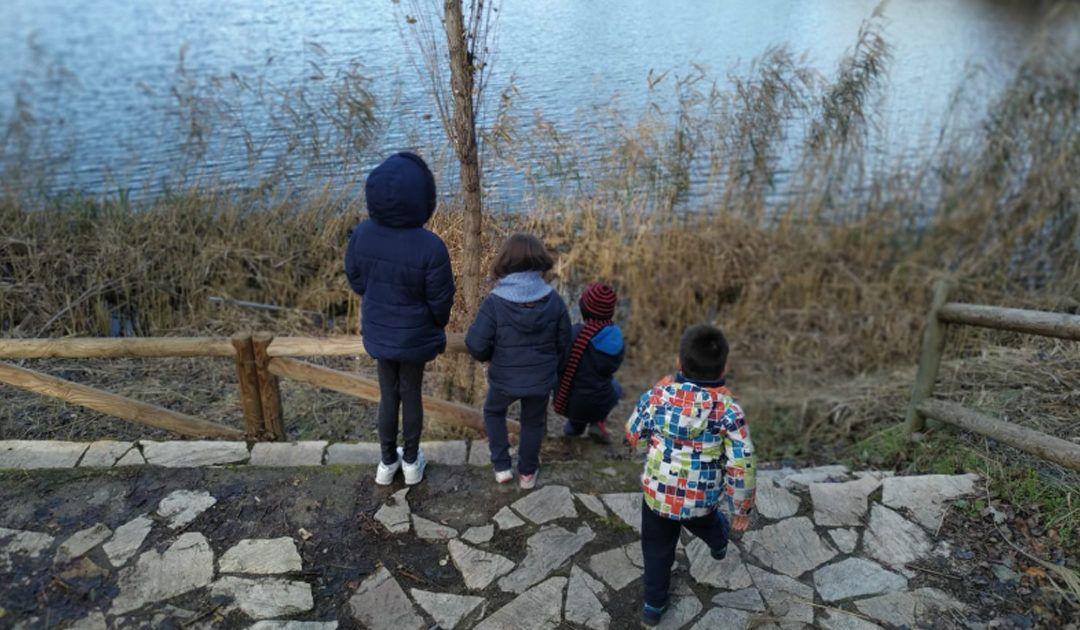 Ruta con niños por las lagunas de Velilla de San Antonio