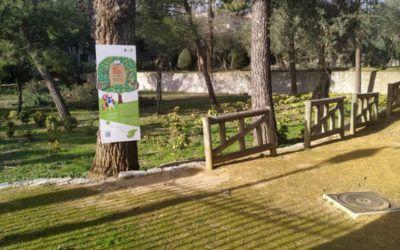 Divertida ruta 'Los árboles hablan' para niños en Villaviciosa de Odón