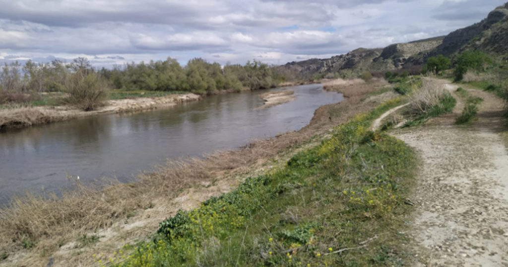 río jarama en titulcia