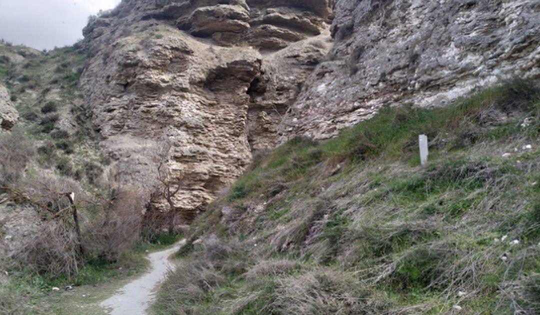 Ruta por los sotos de Bayona y cortados de Titulcia con niños