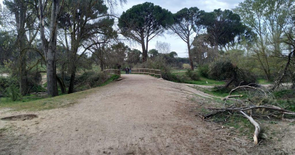 ruta verde por monte valdelatas