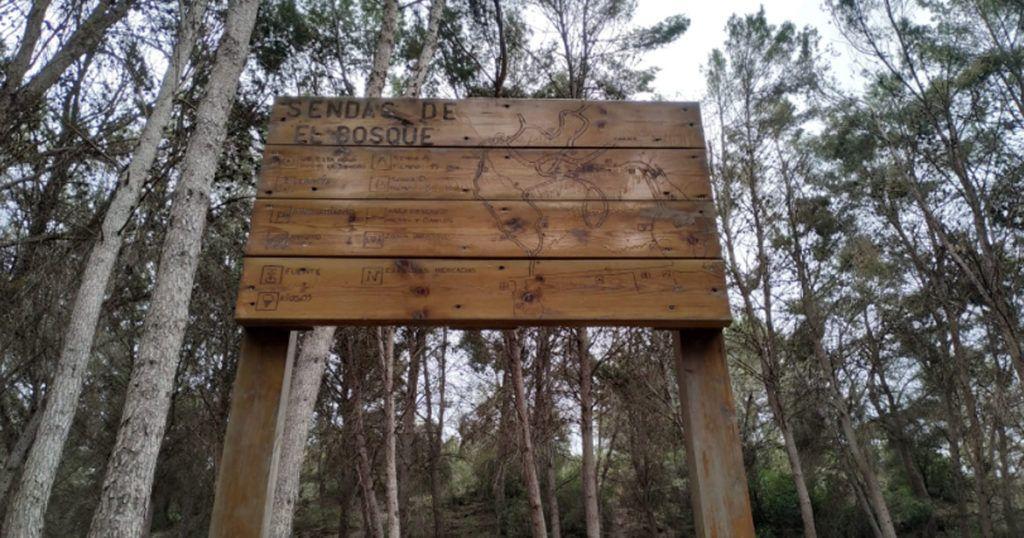 senda el bosque en morata de tajuña